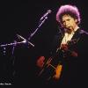 Bob Dylan musico