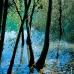 Pantano de Anchuricas Sierra del Segura